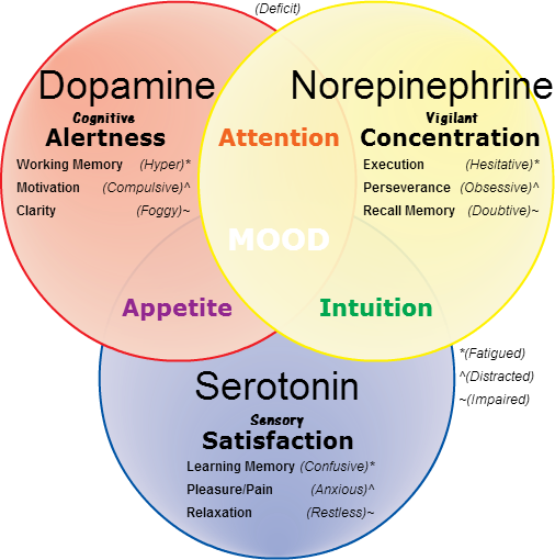 NorepinephrineDopamineSerotonin